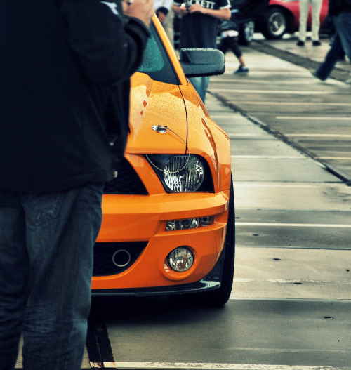 automobilesandfemales:  Nice Things  Wepa!!!