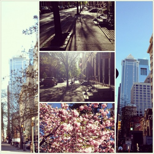 Gorgeous morning in the city! Beauty everywhere! #philly  (Taken with instagram)