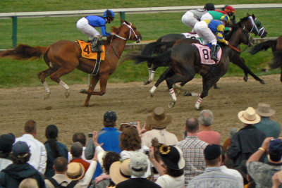 Street Sense and Curlin tuck behind the field in the early stages of the 2007 Preakness, which Curlin won.