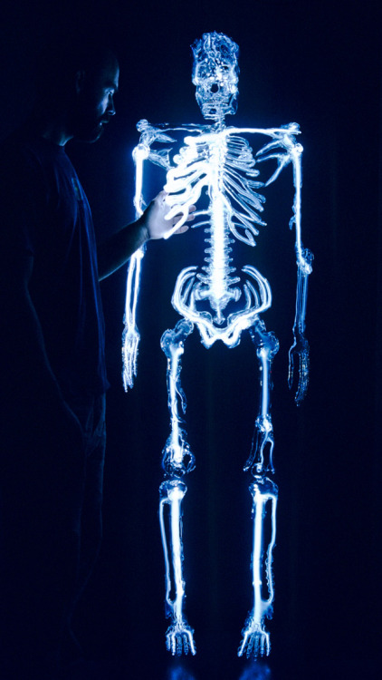 This life-sized glass skeleton, filled with the noble gas krypton, is a sculpture by Eric Franklin called Embodiment. Pretty… More photos at io9