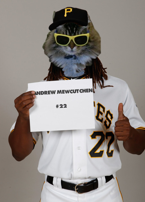 Are you as excited for Meowpening Day as Andrew MewCutchen was for picture day?