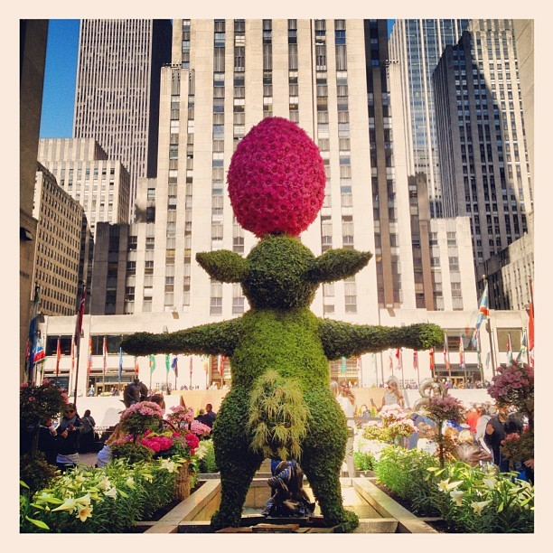 Springtime at 30 Rock