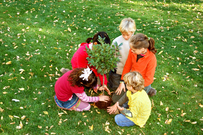 Plant A Fruit Tree Day is April 10th! If every person were to plant one fruit tree we'd already be living in Paradise on Earth! If you have any land, now is the time to create abundance so we can heal ourselves and Mother Earth.