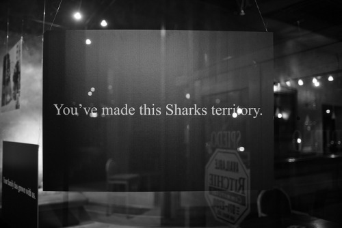 espressodom:  Sharks Territory on Flickr.