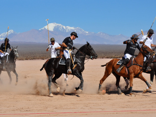 Polo in Argentina: Wine, the Andes, Beautiful Women, and Handsome Men
