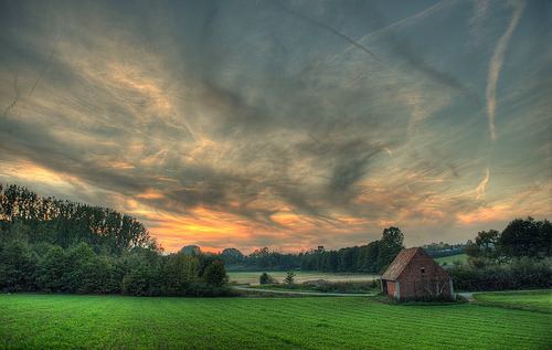 woodendreams:  (by Dirk Paessler)  Farnbach Valley, Germany.