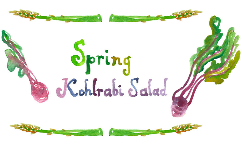 A spring-y salad that would be great for an Easter or Passover meal! photos and illustration by Erin Gleeson