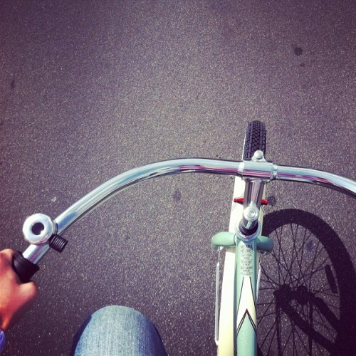 Bicycle ride 💚 (Taken with instagram)