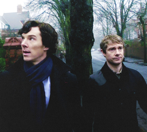 consulting-cream-tea:  Sometimes they're so beautiful I want to cry.