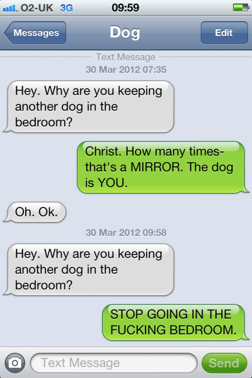 Text from Dog is magnificent.