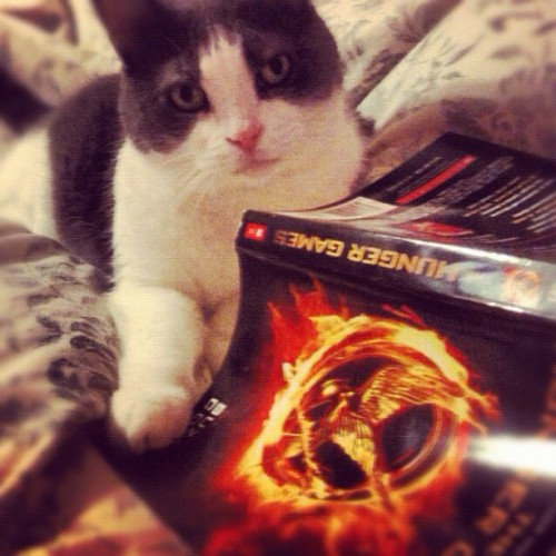 thefluffingtonpost:  Toronto Cat Bored by 'The Hunger Games' Tired of hearing everyone yammer on about it at the office, Louie finally broke down and started reading The Hunger Games. But the Toronto cat was taken aback when he learned the story was about post-apocalyptic children locked in mortal combat, and not about the fun you have running into the kitchen every time you hear the can opener. Sources close to the situation say Louie is even less inclined to see the movie after this disappointment. Submitted by Jaclyn Klein.