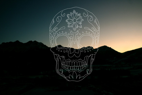 I'm glad I made this skull outline. Now I can put it on ALL THE THINGS!