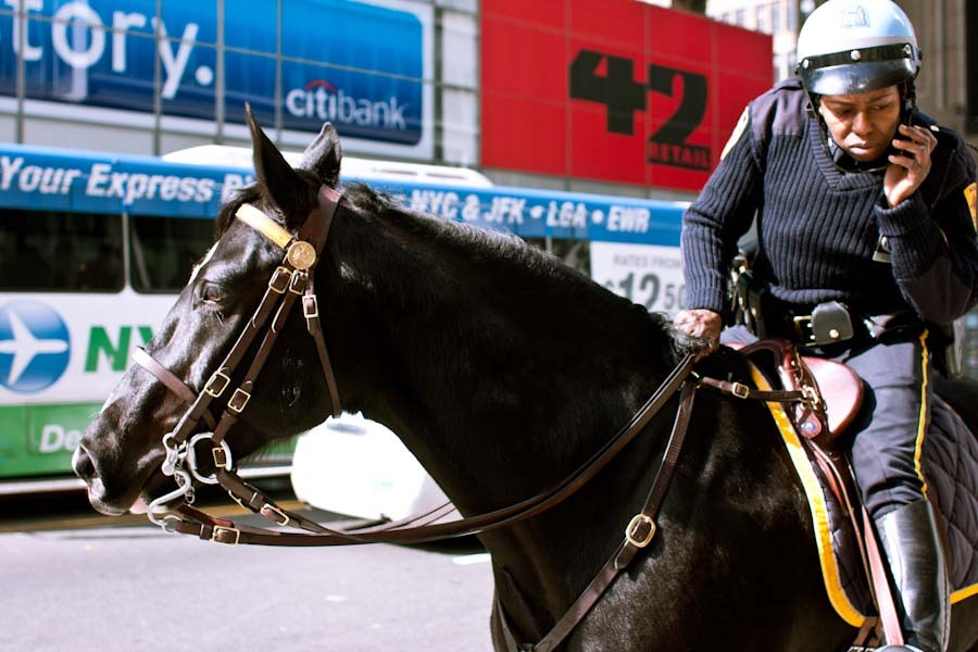 horse cop. new york city.
