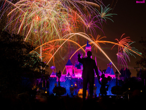 Disneyland - Remember… Dreams Come True! Fireworks Spectacular (145 Second Exposure) by Tom Bricker (WDWFigment) on Flickr.
