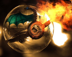 The Pokeball of Charizard