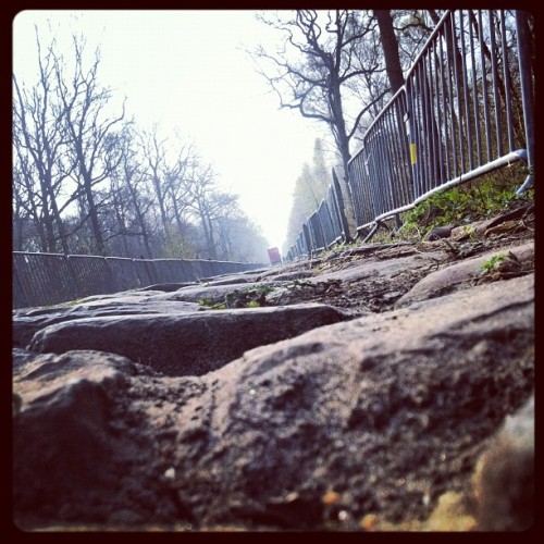 cadenced:  Pavé that will greet riders in the Arenberg Forest section of the Paris-Roubaix this Sunday as photographed by Kristof Ramon.   so excited to get up early and watch this, even if it is just online.