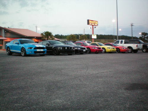 Mustang gathering in NW Florida