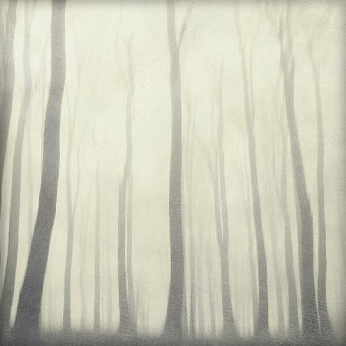 Dirk Wuestenhagen | Dyrk.Wyst - sOft iCe fOrest [found at uruouru]