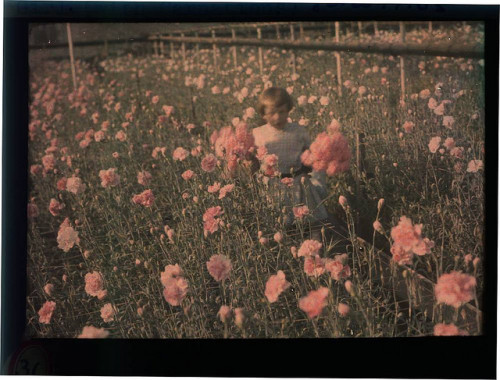 Girl with Carnations by George Eastman House on Flickr.