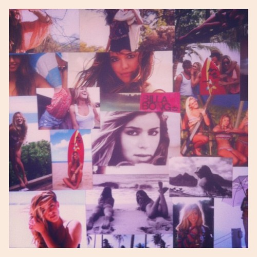 dragonfliesandwaterlilies:  Billabong collage