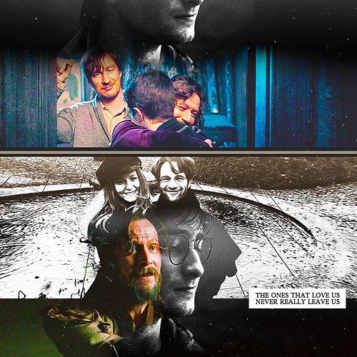Harry Potter: Why are you here, all of you?Lily Potter: We never left.