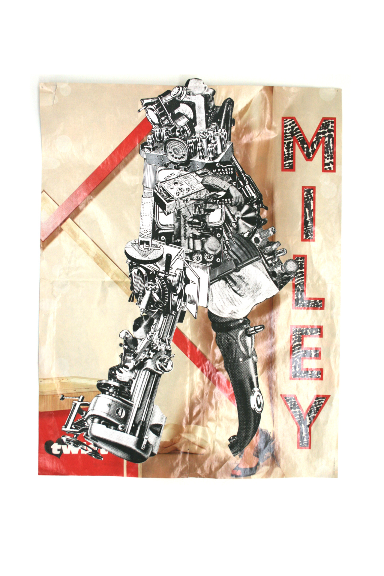 """Miley 2"" Collage Esteban Neumann 2010"