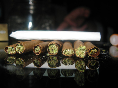 ipowder:  Rollies
