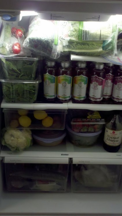 jazmineleath:  This is some SERIOUS dedication! My fridge WILL look like this one day!  Someone needs to make their own kombucha..