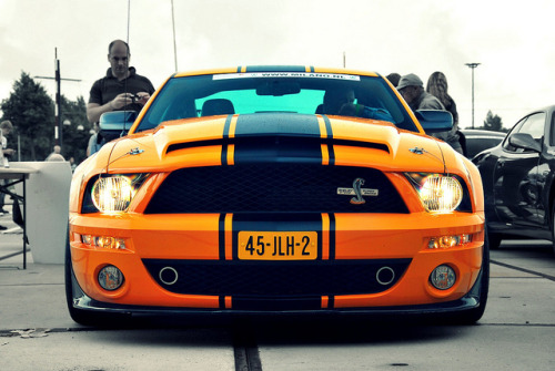 yrys-automotive:  SuperSnake. | explored | by Jurriaan Vogel on Flickr.