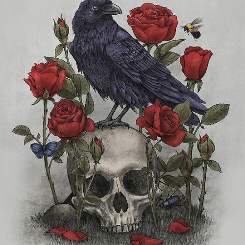Memento Mori by Terry Fan Available on cards, art prints, posters and iPhone cases.