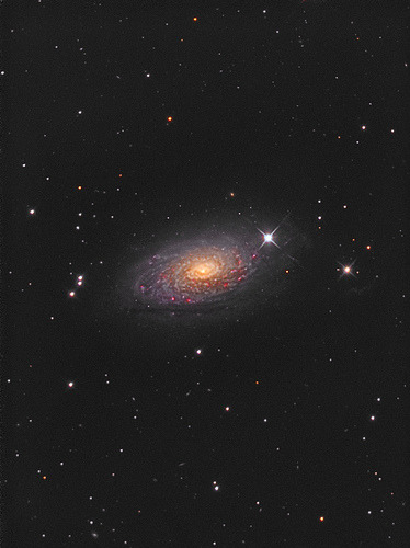 M63 - Sunflower Galaxy (by John.R.Taylor)