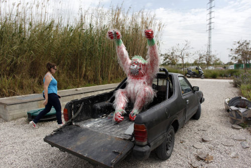jjffo:  (via For Passover fun in Israel, a safari of animals crafted from Coca-Cola trash - Boing Boing)
