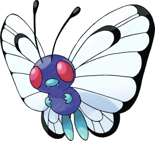 "Butterfree Ntl. Dex #012 Type: Bug/Flying Abilities: CompoundEyes/Tinted Lens Height: 3'07"" Weight: 70.5 lbs Butterfree, the Butterfly Pokemon, is the final form of Caterpie and Metapod. It resembles a vaguely anthropomorphic butterfly. Unlike true insects, it only has four legs, which are a pale blue color. It has a nose-like structure, which is a similar color. The coloration of a Butterfree's body is a darker purple-blue. It has large veined wings, which are white with black markings. These markings can help distinguish male and female individuals. It has large compound eyes that tend to be a reddish color. Like members of the order Lepidoptera, Butterfree's two pairs of wings are covered in fine scales. Its legs are covered in fine hairs, which aid in the collection of honey. A female has black spots on the lower parts of her wings. The waterproof scales on Butterfree's wings are loosely attached, and if the Butterfree flaps them hard enough, they will be released into the air. This resulting ""dust"" is toxic, and can be irritating if inhaled. In some cases, additional powders will be mixed in, some causing sleep and others paralysis. In addition to the usual powers possessed by Bug-type Pokémon, Butterfree also learns a variety of powerful Psychic-type moves. Butterfree spends most of its time foraging for nectar and pollen, locating the flowers by its sense of smell. In the wild, they need to eat constantly. Special adaptations such as waterproofing on their wings, and tiny hairs on their legs let them gather food even in the rain. Butterfree will roam up to six miles (ten kilometers) from their nest in search of honey. Butterfree collect and consume pollen and honey from flowers. Butterfree also consume sap from trees if they have been opened by Heracross. Butterfree can be found in forests and wooded areas with high amounts of moisture and mist. They can also sometimes be found flying near the ocean, which may be part of Butterfree's migratory breeding pattern. This Pokémon's natural range includes Kanto, Johto, Sinnoh, Unova."