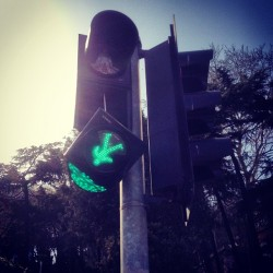 Amut! #nsdos #trafficlight #istanbul #instagramers #iphonograpy #webstagram #ignation #instalent #iphoneonly #instascapes #istanbul #turkey #4s #instaturkey #epic #fail #green (Taken with Instagram at Dolmabahçe)