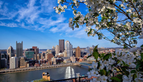 pittsburgh-love:  Mount Washington in Bloom by Kurt Miller