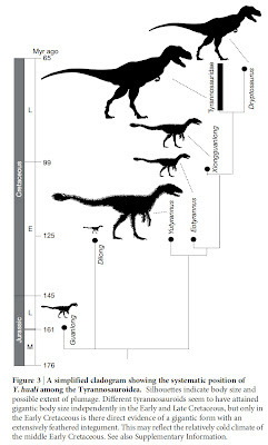 PALAEOBLOG: Yutyrannus, A Giant Feathered Tyrannosauroid From China Basically storing up details to flummox Ben next time I hang out with him and family.