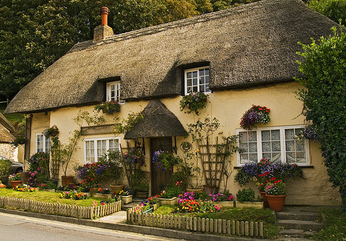 Cottage at West Lulworth, Dorset (by Anguskirk)