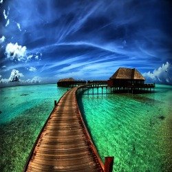 Bora Bora Dream Escape….