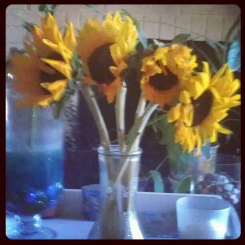 Sunflowers from Allan (Taken with instagram)