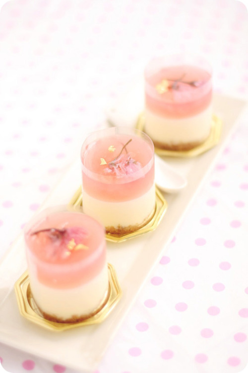 gastrogirl:  sakura white chocolate cream cheese dessert.