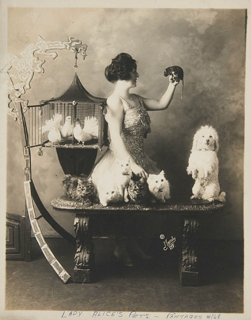 Lady Alice's Pets by Moody Studio, c. 1920A rat in the hand is worth two in the bush…