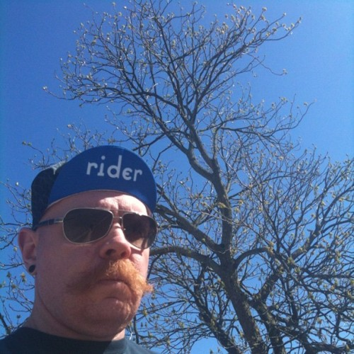 I like cycling caps. #sunnyinCLE #cyclingcaps #tree #sun (Taken with instagram)