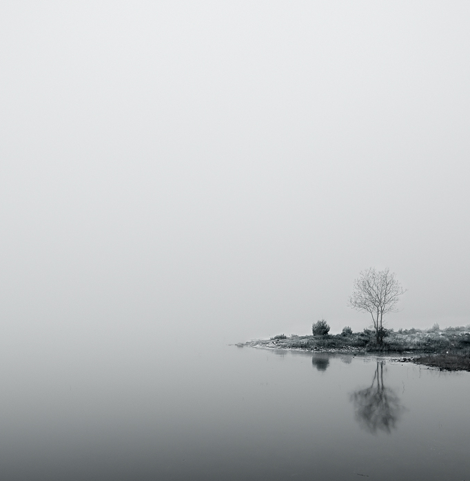 ecocides:  Fog and loneliness | image by Abel M. González  It's the edge of the world.