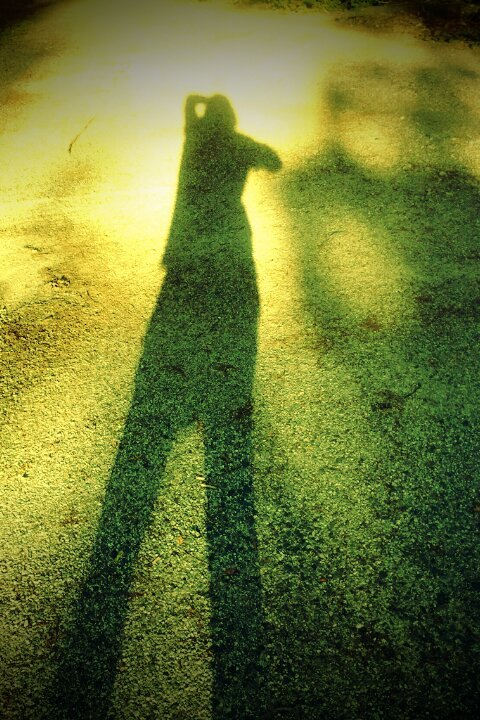 7. Shadow My shadow looks like a blob of nothing with really long legs.