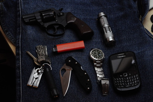 My EDC: -flashlight with CREE LED-Röhm RG59 signal/pepper pistol (as I live in Hungary it's terribly hard to get a permit for a firearm, until then I decided this can be a decent way of self defense)-BlackBerry 8520 Curve-Seiko5 automatic watch-Spyderco Byrd Meadowlark-Cricket lighter  On the keychain: -Swiss-Tech Micro-Plus 8in1-Osram LED light  A question: I decided to buy something nice for my EDC or my EDC bag for my birthday. What would you suggest?