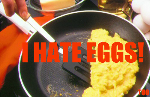 the-unpopular-opinions:  I simply hate eggs. They're gross tasting and gross looking. Gross texture, too. I've never liked them. Never will.