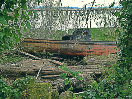 Found this old beached boat while biking around Astoria. I can definitely understand why the Goonies was filmed here.
