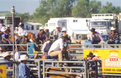 Rodeo, Easter in the Country, Roma, Queensland Happy Easter all! And what better way to spend it than seeing herbivores getting tied up. Yee hah! [http://easterinthecountry.com.au/home]