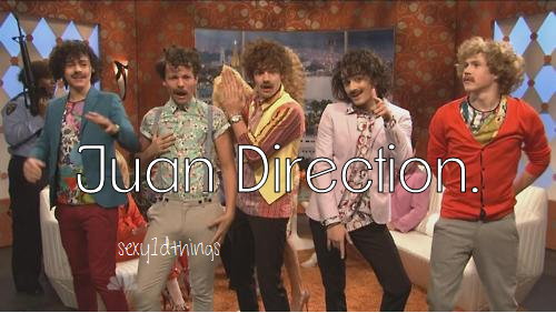 paulacarasig:  JUAN DIRECTION ♥