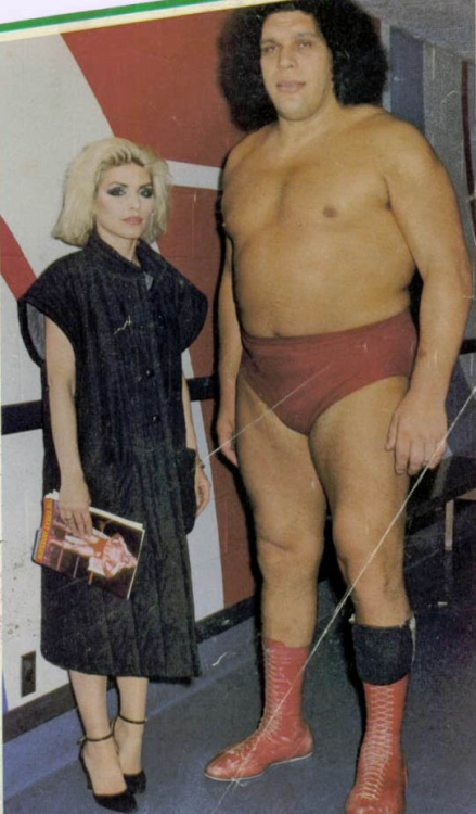 areasofmyexpertise:  Andre the Giant and Deborah Harry Courtesy: RETRONAUT That is all.